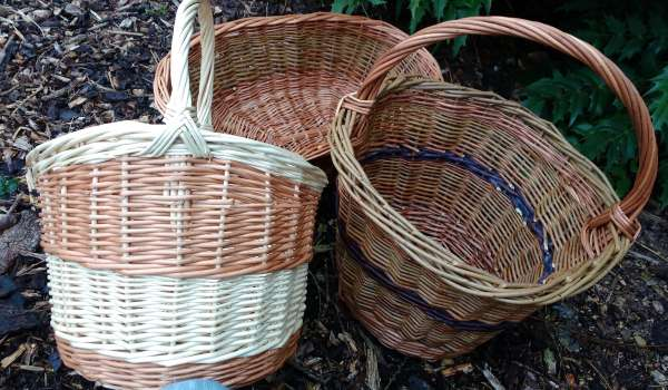 Willow Basketry 20th November - 1 place remaining