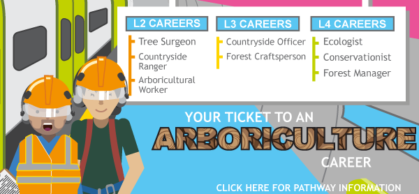Arboriculture Pathway thumbnail - click for further details